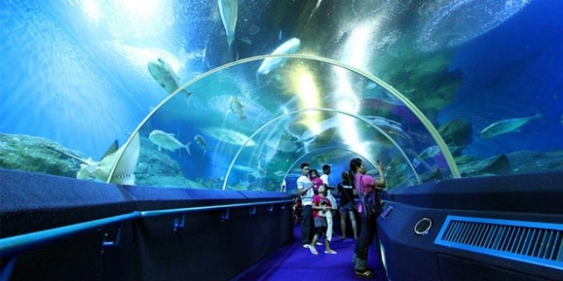 Underwater World Pattaya - Only 5 mins from City Garden Tower Pattaya - www.citygardentower.net